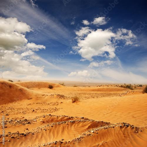 Foto op Aluminium Tunesië Wüste Sahara in Tunesien