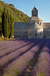 Abbaye de Sénanque #3