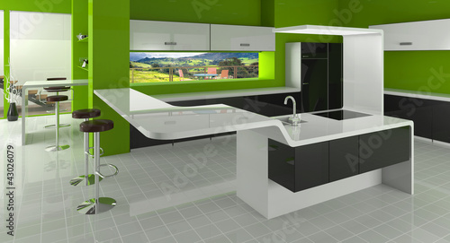 Modern kitchen in green, black and white colors