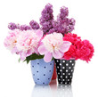 beautiful spring flowers in cups isolated on white