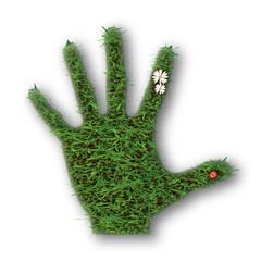 Green Grass Hand