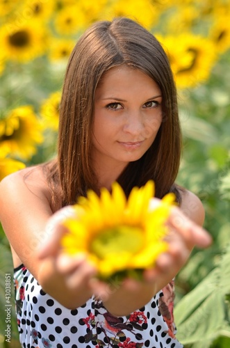 sunflower in hand