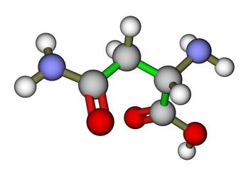 Amino acid asparagine 3D molecular structure