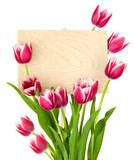 Fototapety Beautiful Tulips and Empty Sign for message / wooden panel / iso