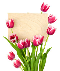 Beautiful Tulips and Empty Sign for message / wooden panel / iso