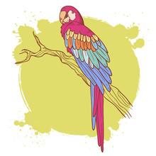 Красочные рисованной Ара попугай сидел на дереве, поздний завтрак, изолированных
