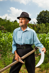 Senior farmer sharpening his scythe
