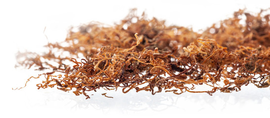 Dried chopped leaves of tobacco, premium rolling tobacco