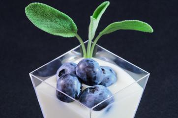Crema di yogurt alla salvia con mirtilli