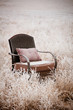 Snowy Vintage Chair