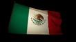 Flag Mejico 01