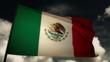 Flag Mejico 02