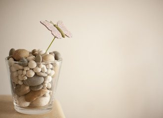vase with stones
