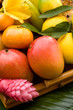 A basket of assorted  tropical fruit