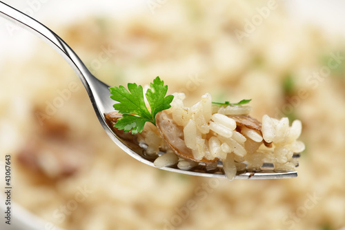 Cep Risotto  on a fork