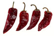 Dry chili/paprika peppers on white background
