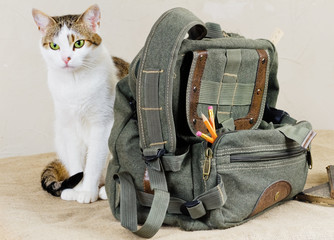 Backpack with pencils and cat