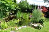 Garten und Teich im Sommer