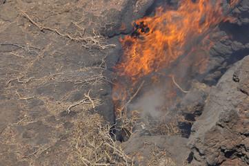 Activité géothermique , Islote de Hilario, Timanfaya