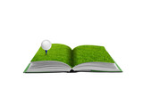 3D open green grass book with golf ball, imagination and concept