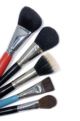 Five different make up brushes