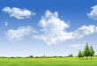 Beautiful landscape with tree,  grass green field,forrest  and b