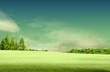 Spring landscape with forrest, tree,green grass and field backgr