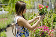 Cute young woman buying flowers at a nursery garden