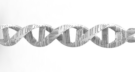 3d dna spiral with code
