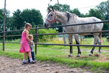 Kinder auf dem Pferdehof