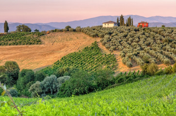 Landscape in Tuscany evening sun