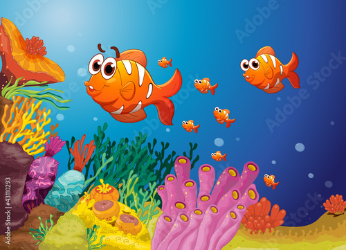 fish in a blue water
