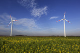 Wind Turbines with blue sky and the sun shining on green