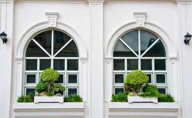 Two White window