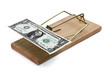 Mouse trap with money as incentive