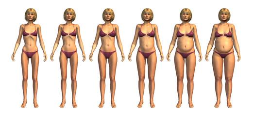 Weight Progression: Underweight to Overweight