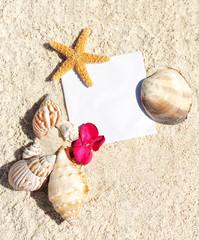 blank paper on white sand beach
