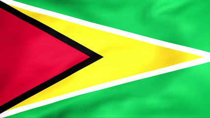 Developing the flag of Guyana