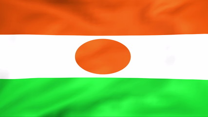 Developing the flag of Niger