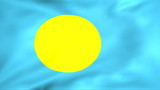 Developing the flag of Palau