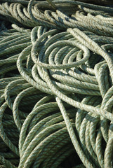 Twisted fishing rope