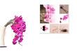 Bouquet et tableau orchidée rose