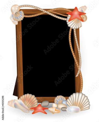 Photo frame with seashells, vector illustration