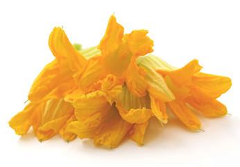 Fiori di zucca - Zucchini flowers