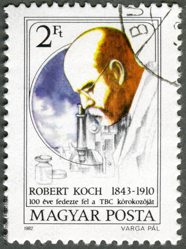 HUNGARY - 1982: shows Robert Koch, TB Bacillus centenary