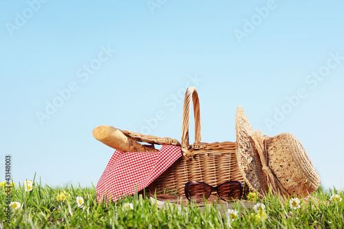 Tuinposter Picknick Picnic on Meadow