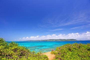 コマカ島の亜熱帯植物と紺碧の空