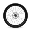Bicycle wheel - 43158047