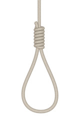 Noose on a white background