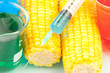 Syringe on corn